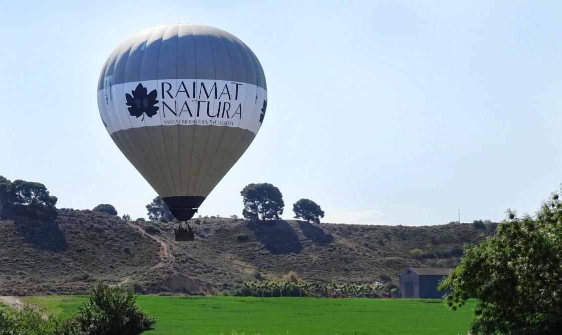 Vol en globus Raimat Natura