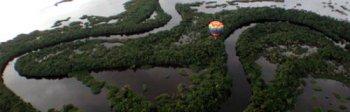 Expedició Turpial - Amazones