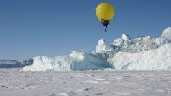 Turpial Ártico