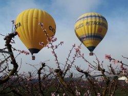 Descubre los campos floridos de Aitona desde el aire